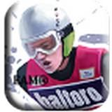 跳台滑雪2012