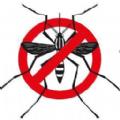 电子驱蚊助手